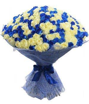 Микс-букет из 201 белой и синей розы (70см) #598