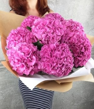 Букет из розовых гортензий (9 шт) #986