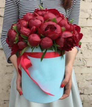 Красные пионы в голубой шляпной коробке (29 шт) #996