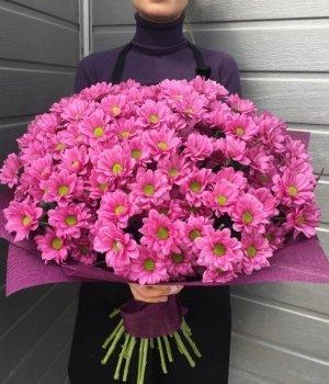Букет из розовых хризантем (39 шт) #1001