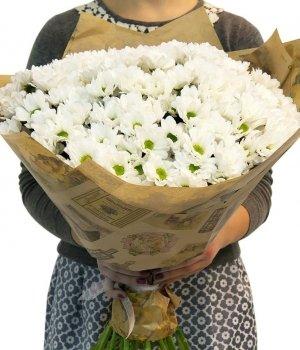 Букет из белых хризантем (29 шт) #715
