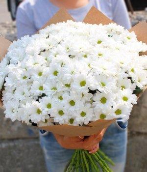 Букет из белых кустовых хризантем (19 шт) #513