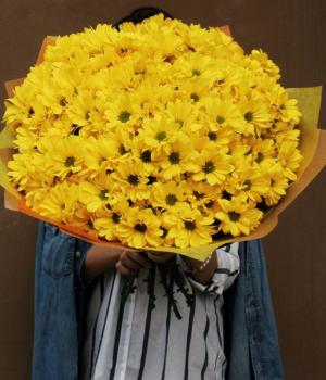 Букет из желтых хризантем ( 35 шт) #101