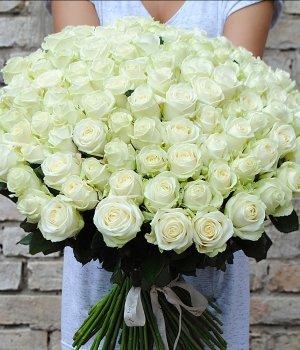 Букет из 101 белой розы (70 см) #132