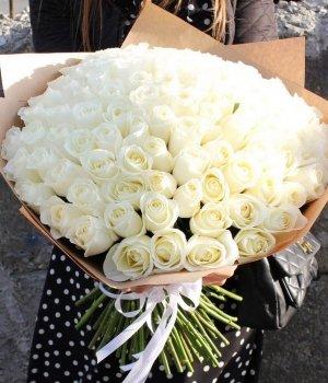 Букет из 99 белых  роз Эквадор (70 см) #1007
