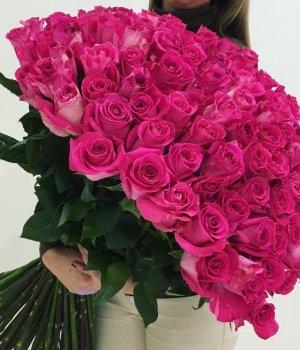 Букет из 99 розовых роз Эквадор (70 см) #1008