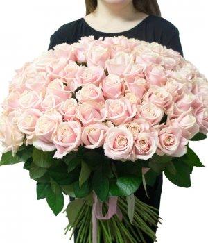 Букет из 99  кремовых роз Эквадор (70см) #1009