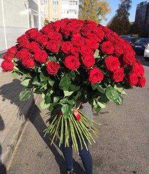 Букет из 101 красной розы Эквадор Фридом ( 90 см) #587