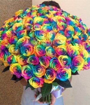 Букет из 101 радужной розы (70см) #572