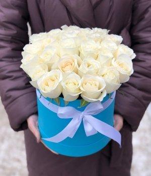 Белые розы Эквадор  в голубой шляпной коробке (25 шт) #149