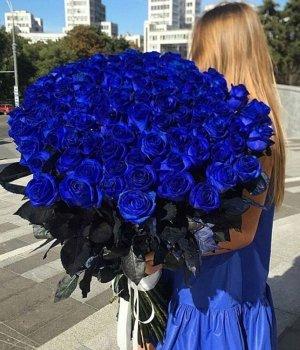 Букет из 101 синей розы (70 см) #109