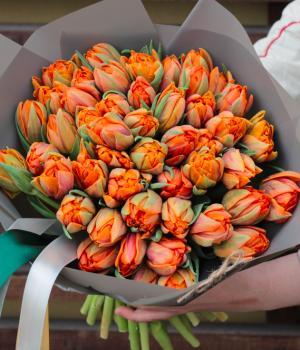 Букет из оранжевых пионовидных тюльпанов (51 шт) #906