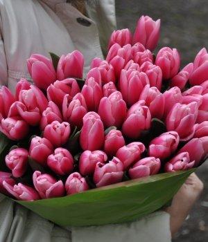 Букет из розовых тюльпанов (49 шт) #327