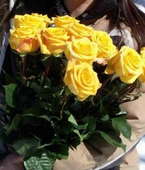 Букет из 9 желтых роз (60см) #504