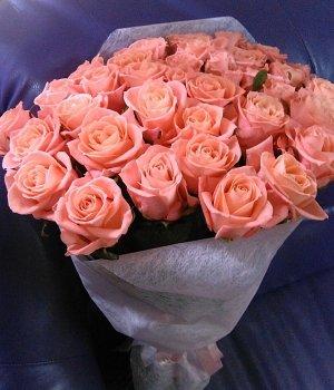 Букет из 25 персиковых роз (50см) #494