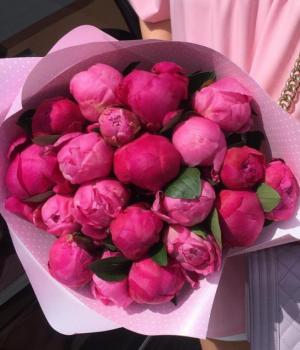 Букет из розовых пионов (19 шт) #968