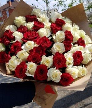 Микс-букет из 51 бело-красной розы (60 см) #1102
