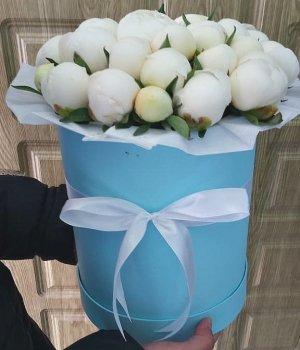 Белые пионы в голубой шляпной коробке ( 19 шт) #1123