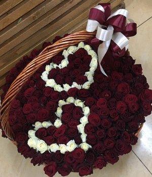 Корзина из 201 бело-красной розы #1137