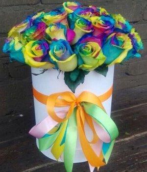 Радужные розы в белой шляпной коробке (19 шт) #1142