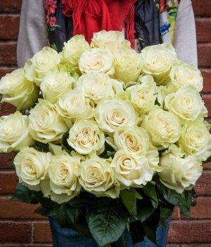 Букет из 25 белых роз Эквадор (50 см) #1262