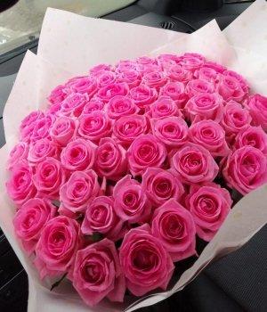 Букет из 51 розовой розы (60 см) #527