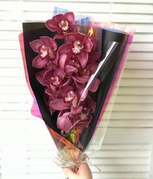 Букет из бордовой орхидеи (60 см) #1324