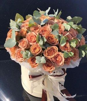 49 роз Каппучино в белой шляпной коробке #1346