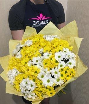 Микс-букет из кустовых   хризантем (25 шт) #1406
