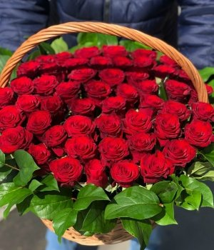Корзина из 51 красной розы #1104