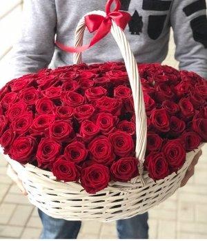 Корзина из 151 красной розы #1483