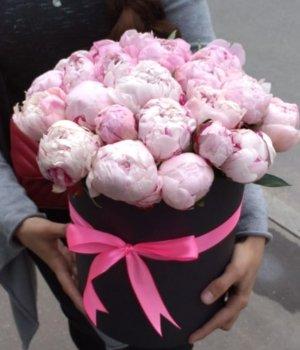 Розовые пионы в черной шляпной коробке (29 шт) #669