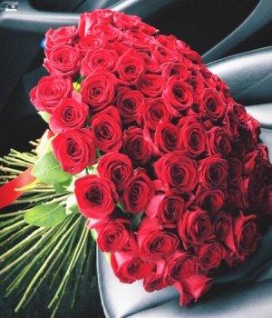 Букет из 101 красной розы (60 см) #1533