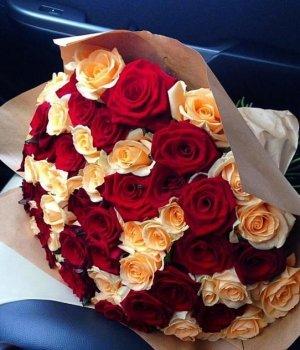 Букет из 101 красной и кремовой розы (50 см) #1536