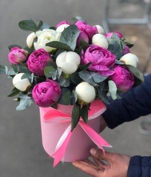 Микс из пионов в розовой  шляпной коробке (19 шт) #964