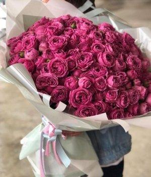 Букет из Пионовидных роз Мисти Баблз  (99 шт) #1590