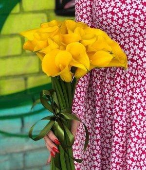 Букет из желтых калл (19 шт) #1591