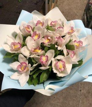 Букет из белых орхидей (15 шт) #1607