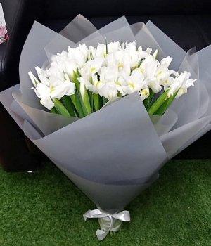 Букет из белых ирисов (49 шт) #1159