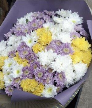 Микс-букет из кустовых хризантем (25 шт) #511