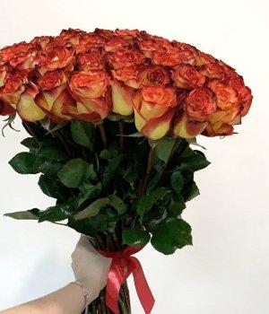 Букет из 49  роз Эквадор (70 см) #337