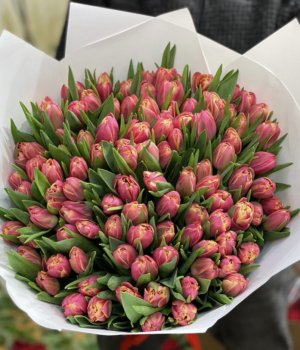 Букет из красных пионовидных  тюльпанов (101 шт) #58